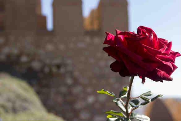 Almería paquete cultura y diversión viaje estudios